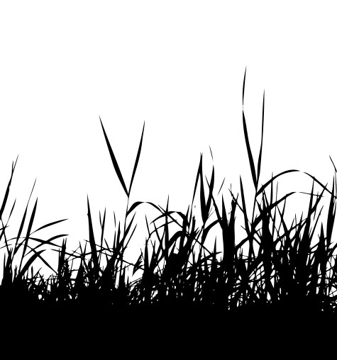 Grass Pattern Sample Image